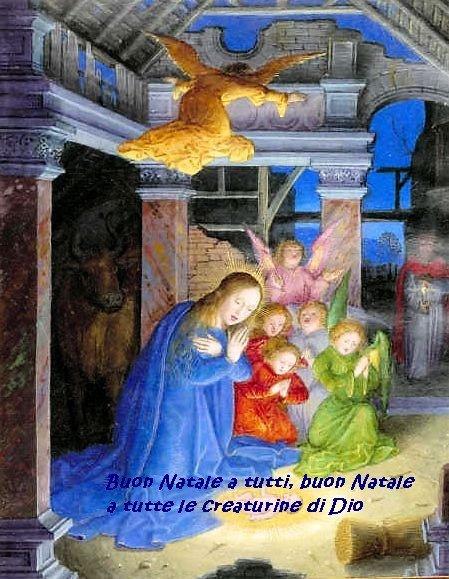 nativitydiario.jpg