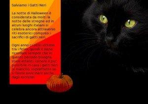 proteggete i gatti neri stanotte! dans GATTI NERI (aggiungo il 12 luglio 2011) 3_2360_salviamo-i-gatti-neri-300x211