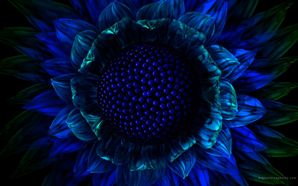 dark-blue-flowers-wallpaper