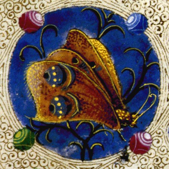 imm diarioBibbia_di_Borso_dEste,_Farfalla,_Vol._I,_C._4v_(foto_Biblioteca_Estense_Universitaria,_Modena)