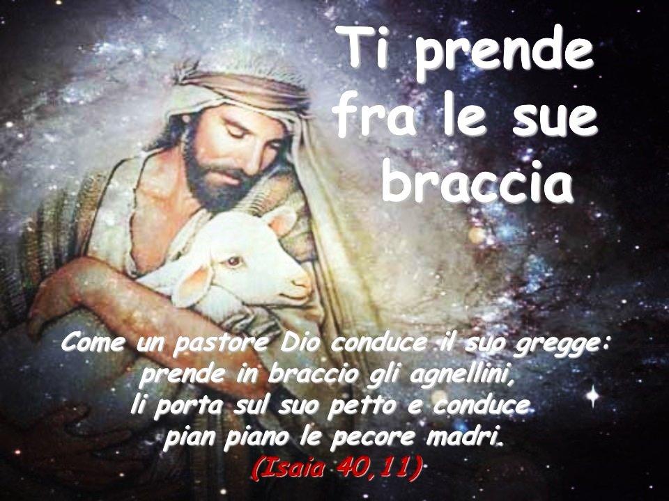 imm diario Isaia 40, 11